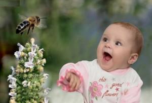 Beneficiile veninului de albina, asupra tenului