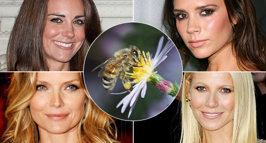 Veninul de albine - ingredient antirid preferat de vedete